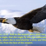 Eye Of Providence Over America (Revelation 12 G)